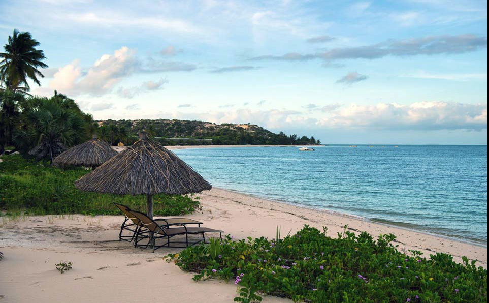 paradise island.png